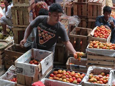 Pedagang menata tomat dagangannya di Pasar Induk Kramat Jati, Jakarta, Selasa (22/12). Jelang Natal dan tahun baru, harga sayur mayur dan beberapa kebutuhan pokok lainnya di beberapa pasar tradisional di Jakarta merangkak naik. (Liputan6.com/Angga Yuniar)