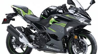Kawasaki resmi meluncurkan Ninja 400 pada tahun 2018 di India. Untuk meningkatkan penjualan, perusahaan asal Jepang tersebut telah memperkenalkan 2 skema warna baru