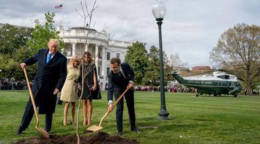 Donald Trump menanam pohon bersama dengan mitranya, Emmanuel Macron pada April 2018 lalu (AP Photo)