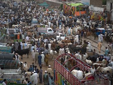 Orang-orang berkerumun di pasar ternak menjelang festival Muslim Idul Adha di Peshawar, Pakistan (13/7/2021). Jelang Idul Adha, Pasar ternak di Peshawar, Pakistan mulai sibuk menjual hewan kurban. (AFP/Abdul Majeed)