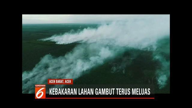 200 hektar lahan gambut di Aceh Barat habis dilalap api. Petugas BPBD, TNI, Polri, dan warga terus berupaya padamkan titik api.