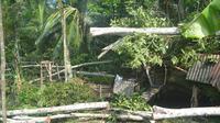 Puting beliung merusak 182 rumah dan berbagai bangunan lain di Pemalang, Jawa Tengah. (Foto: Liputan6.com/Muhamad Ridlo)