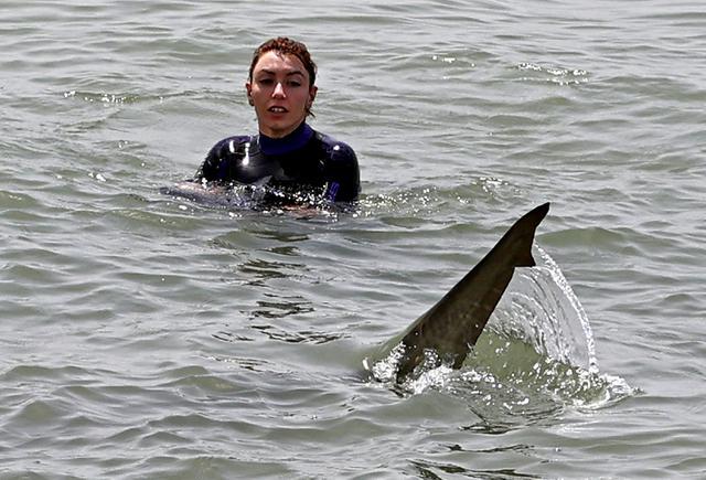 Seekor hiu berenang melewati perempuan dengan pakaian selam di Laut Mediterania di lepas pantai kota Hadera di utara Tel Aviv, Israel, Selasa (20/4/2021). Fenomena yang menjadi perhatian warga ini diduga akibat suhu air laut Mediterania berubah menjadi hangat. (JACK GUEZ/AFP)