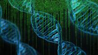 Ilustrasi DNA. Kredit: Pete Linforth via Pixabay