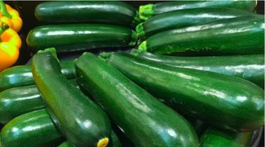 Ilustrasi Zucchini