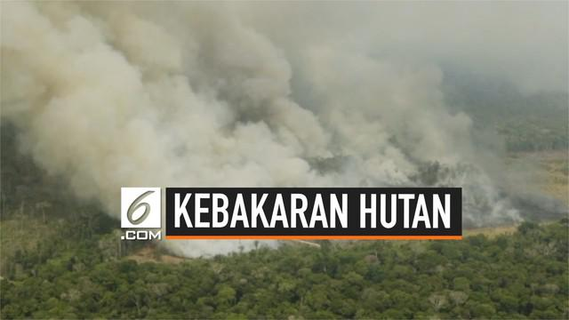 Greenpeace mengunggah video kebakaran hebat yang terjadi di hutan hujan Amazon, pemerintah Brasil mengirim 10 ribu tentara untuk mengatasi kebakaran tersebut.