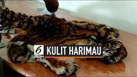 Pihak keamanan Bandara Internasional Minangkabau menggagalkan pengiriman paket berisi kulit Harimau Sumatera. Kulit harimau dibungkus dalam kardus bersama beberapa makanan ringan.