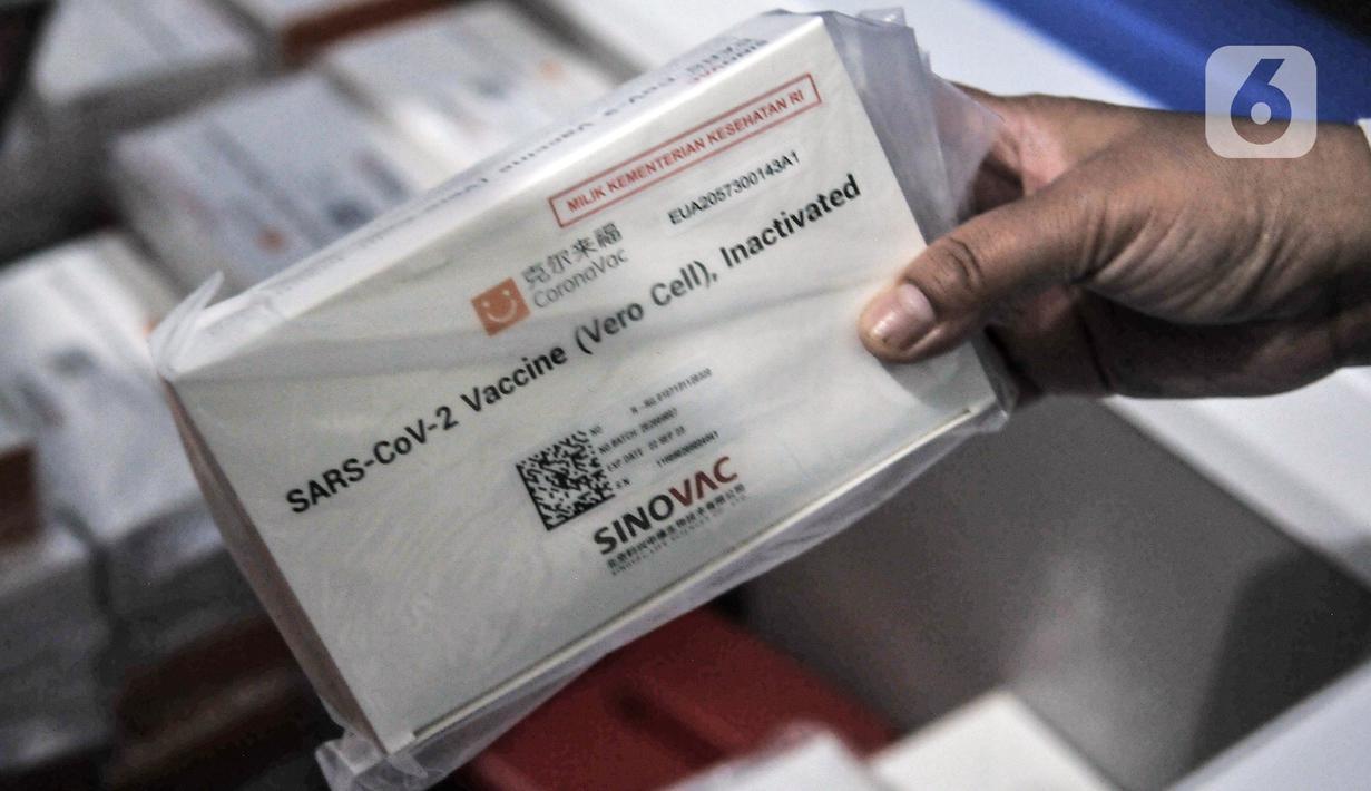 Petugas menunjukkan vaksin COVID-19 produksi Sinovac di gudang penyimpanan UPTD Instalasi Farmasi Dinas Kesehatan Kota Bekasi, Jawa Barat, Selasa (12/1/2021). Sebanyak 14.060 vaksin COVID-19 produksi Sinovac diterima Dinas Kesehatan Kota Bekasi pada tahap I. (merdeka.com/Iqbal S. Nugroho)