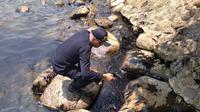 Petugas mengambil contoh limbah minyak yang mencemari Pantai Nongsa. (foto: Liputan6.com / ajang nurdin)