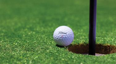 Ilustrasi golf