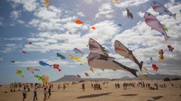 Layang-layang berbentuk hiu terbang selama Festival Layang-layang Internasional di Fuerteventura, kepulauan Canary, Spanyol, 10 November 2018. Festival diikuti 45 penerbang layang-layang profesional dan amatir dari delapan negara. (DESIREE MARTIN/AFP)