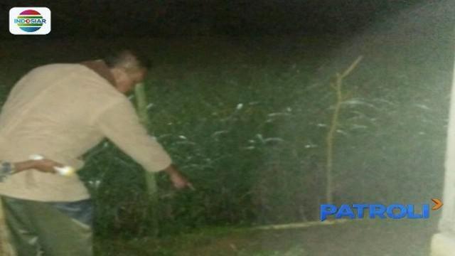 Seorang pelajar SMA di Tasikmalaya, Jawa Barat, tega membuang bayi hasil hubungan gelapnya ke pematang sawah. Beruntung bayi tersebut selamat saat ditemukan, meski di tubuhnya ada bercak bekas gigitan serangga.