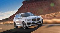 all new bmw x5 (ist)