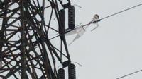 Tim PLN Jawa Timur kembali menemukan layang-layang yang menyangkut pada penghantar 150 kV Ujung-Bangkalan. (Foto: Dok PLN)