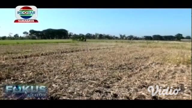 Sebuah sumur di ladang warga Dusun Pilang, Desa Ngompro, Kecamatan Pangkur, Kabupaten Ngawi, menyemburkan api. Api itu menyembur setinggi sekitar 50 sentimeter dari pipa paralon yang ditancapkan ke dasar sumur.