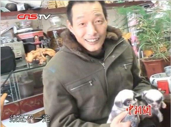 Pemilik anjing panda | Photo copyright Rocketnews24.com
