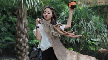 Masih sangat muda, Naomi merupakan artis kelahiran 20 September 1996. Gaya liburan Naomi yang simpel dan sesuai usia selalu berhasil bikin netizen gemas, salah satunya saat di Bali Zoo. (Liputan6.com/IG/@naonomnom)