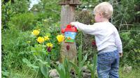 Ada banyak pelajaran berharga yang bisa Anak dapatkan jika ia terbiasa berkebun di rumah sejak kecil.