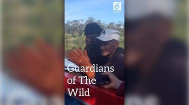 Guradians of The Wild (Para Penjaga Hutan) adalah sepenggal cerita mengenai kehidupan masyarakat adat di Danau Sentarum, khususnya suku Dayak Iban, yang masih menjalankan hukum dan norma adat untuk menjaga hutan dari eksploitasi.