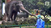 Petugas menyemprotkan dIsinfektan untuk mencegah penyebaran Covid-19 di Kebun Binatang Ragunan, Jakarta Selatan, Selasa (17/03/2020). Penyemprotan tetap dilakukan walaupun hingga sekarang KB Ragunan masih ditutup untuk umum. (merdeka.com/Arie Basuki)