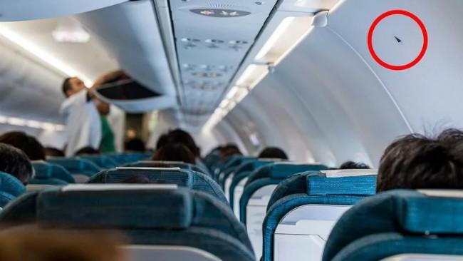 Stiker segitiga dalam kabin pesawat terbang. (Sumber Shutterstock/leungchopan)