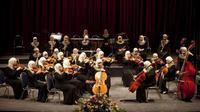 Untuk bergabung ke grup orkestra, kita harus memiliki keahlian bermusik. Namun grup orkestra ini beranggotakan penyandang tuna netra.