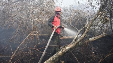 Seorang petugas pemadam kebakaran berupaya melakukan pemadaman di tengah pekatnya asap kebakaran di Kampar, provinsi Riau pada 17 September 2019. Kebakaran hutan dan lahan (karhutla) yang masih terjadi membuat sejumlah wilayah di Provinsi Riau terpapar kabut asap. (ADEK BERRY / AFP)