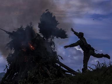 Seorang tentara Meksiko membakar tanaman ganja di kotamadya Cosala, negara bagian Sinaloa, Meksiko (2/10/2019). Tentara Meksiko menemukan permukaan total 30.000 meter persegi perkebunan ganja. (AFP Photo/Rashide Frias)
