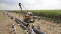Proyek pipa minyak mentah berada koridor Minas - Duri – Dumai dan Koridor Balam-Bangko-Dumai, Wilayah Kerja Rokan.