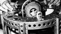 Monyet bernama Albert II menjadi primata pertama yang berhasil ke angkasa luar pada Selasa 14 Juni 1949 (NASA)