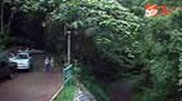 Jika Anda masih bingung mencari lokasi untuk menghabiskan liburan akhir pekan? Mungkin berpetualang di kawasan Taman Nasional Gunung Halimun Salak, Sukabumi, Jawa Barat, dapat menjadi pilihan. Dibalik perjalanan yang cukup menantang, ada banyak kekayaan f