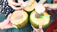 Manfaat air kelapa. (Foto: shutterstock.com By Phassa K)