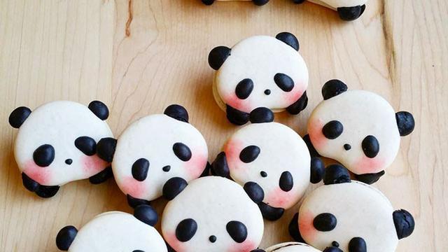 Terlalu Imut Macaron Panda Ini Sayang Bila Langsung Dimakan