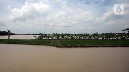 Banjir merendam ladang warga di Desa Sindangsari, Kabupaten Bekasi, Jawa Barat, Rabu (24/2/2021). Sebagian rumah warga masih terendam banjir yang disebabkan jebolnya tanggul Sungai Citarum dan luapan Sungai Ciherang. (merdeka.com/Imam Buhori)