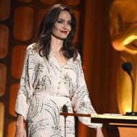 Sejak bulan September tahun 2016 lalu, Jolie mengajukan gugatan cerai pada Pitt. Dan setelah itu juga ia menjadi seorang ibu tunggal yang harus mengurus keenam orang anak sendirian.  (AFP/Kevin Winter)