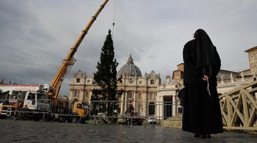 Seorang biarawati memandangi sebuah crane yang mengangkat pohon cemara di Lapangan Santo Petrus, Vatikan, Kamis (21/11/2019). Pohon Natal setinggi 26 meter tersebut berasal dari Dataran Tinggi Asiago di timur laut Italia dan disumbangkan oleh wilayah Veneto. (AP Photo/Alessandra Tarantino)