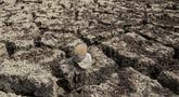Kondisi dasar sebuah danau yang kering di Istanbul, Turki, 21 September 2020. Kota metropolitan terbesar Turki, Istanbul, berusaha mengatasi kekurangan air akibat minimnya curah hujan dan musim panas yang kering. (Xinhua/Osman Orsal)