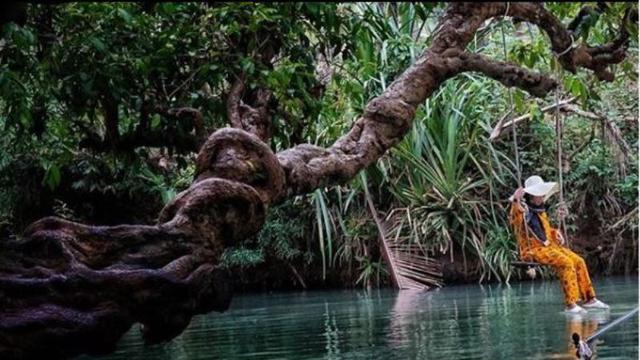 Menyusuri Sungai Maron yang Mirip Amazon di Pacitan