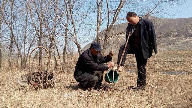 Kisah Dua Sahabat Penyandang Disabilitas Menanam 10 000 Pohon