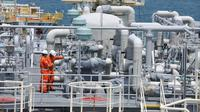Anak usaha PGN, yakni PT PGN LNG Indonesia (PLI) berkongsi dengan PT Pelindo Energi Logistik selaku anak usaha Pelindo III ditugaskan menggarap pembangunan Terminal LNG Teluk Lamong.