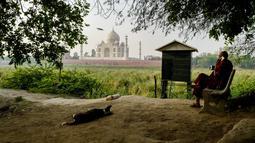 Biksu Buddha duduk di seberang Taj Mahal dari tepi sungai Yamuna di Agra, Jumat (4/5). Sejumlah pihak mengatakan perubahan warna Taj Mahal kemungkinan besar disebabkan pembangunan konstruksi di sekitarnya dan kotoran serangga. (AFP/CHANDAN KHANNA)