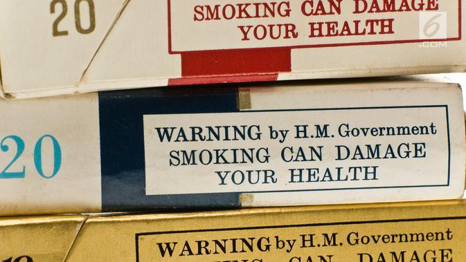 Kak Seto: Merokok Saat di Rumah Aja Berdampak Negatif Bagi Kesehatan Anak