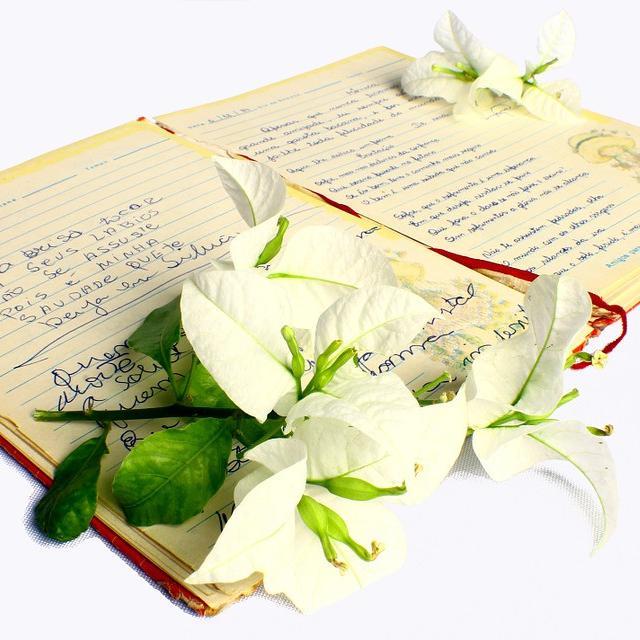 Perbedaan Puisi Lama Dan Puisi Modren - KT Puisi
