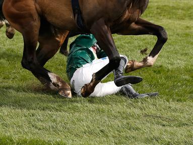 Kuda bernama Curious Carlos terjatuh saat ditunggai oleh Sean Bowen pada pacuan kuda festival nasional Crabbie Grand Liverpool, Inggris, Kamis (7/4/2016). Joki kuda ini terjatuh usai melewati pagar rintangan akhir. (Reuters / Andrew Boyers)