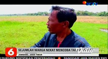 Warga di Desa Banjardowo, Jombang, Jawa Timur, dihebohkan dengan fenomena likuefaksi atau berubahnya kekuatan struktur tanah, setelah dua hari sebelumnya diguyur hujan.