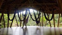 Sacred Nap menjadi salah satu aktivitas unik dan menarik yang wajib dicoba saat berada di Four Seasons Sayan, Bali.