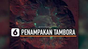 THUMBNAIL TAMBORA