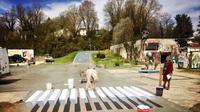 Pakar keamanan jalan menyarankan kajian yang mendalam untuk meninjau penyeberangan jalan tiga dimensi. (Instagram/Joel Lehman)