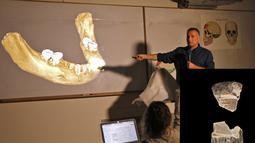 Liran Carmel menjelaskan bagian gigi spesies manusia prasejarah Denisovan selama konferensi pers di Universitas Ibrani di Yerusalem (19/9/2019). Denisovans punah sekitar 15.000 tahun yang lalu dan banyak tentang mereka tetap menjadi misteri. (AFP Photo/Menahem Kahana)