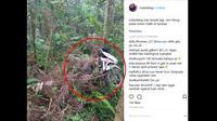 Skuter Nyusruk lantaran mengalami masalah pada bagian rem saat melewati turunan. (Instagram @roda2blog)